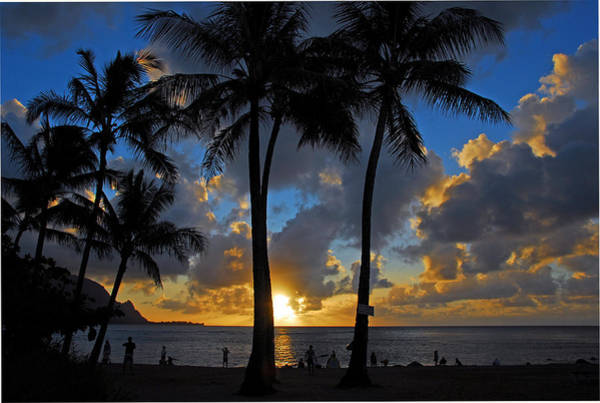 Photograph - Sunset Silhouettes by Lynn Bauer