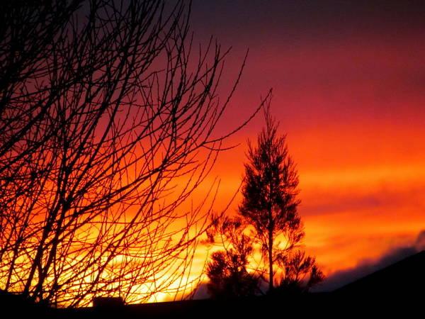 Joyce Woodhouse - Sunset Sky .