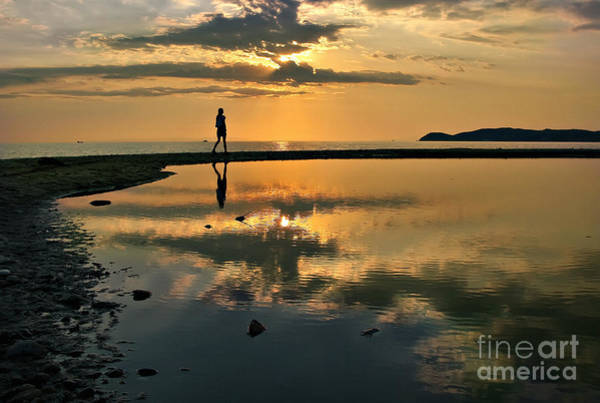 Photograph - Sunset Song Of Loneliness by Daliana Pacuraru