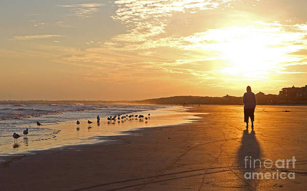 Photograph - Sunset Stroll by Kevin McCarthy