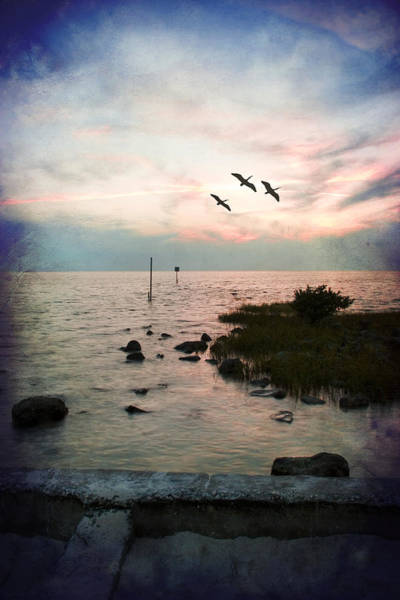 Photograph - Sunset Therapy by Beverly Stapleton