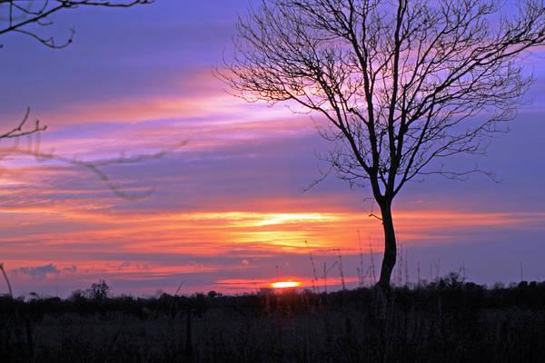 Photograph - Sunset by Tony Murtagh