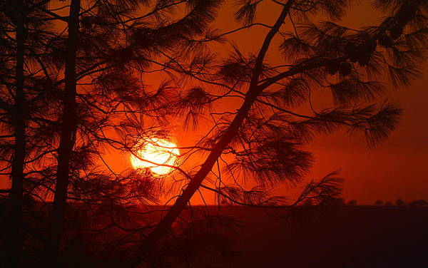 Photograph - Sunset With A Smokey Hue by AJ  Schibig