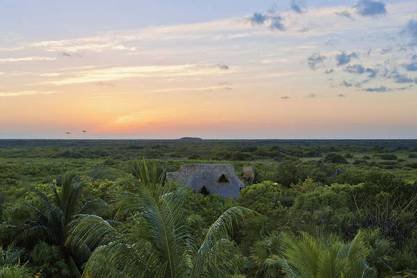 Quintana Roo Photograph - Sunset With Clouds Over Jungle by Sasha Weleber