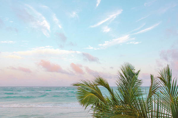 Quintana Roo Photograph - Sunset With Palm Trees Blowing In Wind by Sasha Weleber