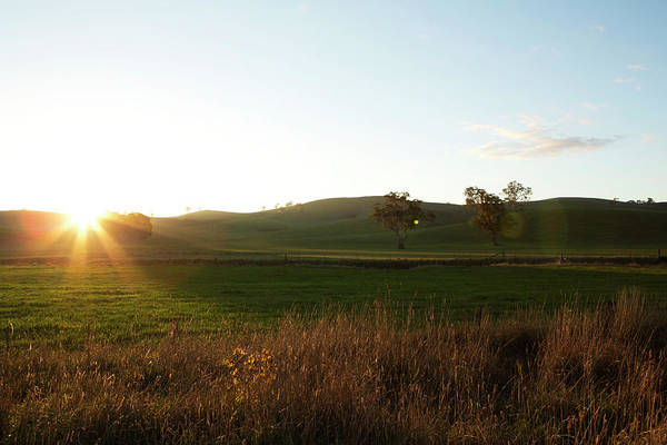 Wall Art - Photograph - Sunset Yarra Valley by James Braund