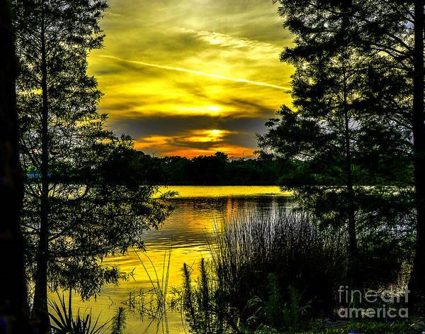 Ivanhoe Photograph - Sunset's Dance by Amanda Sinco