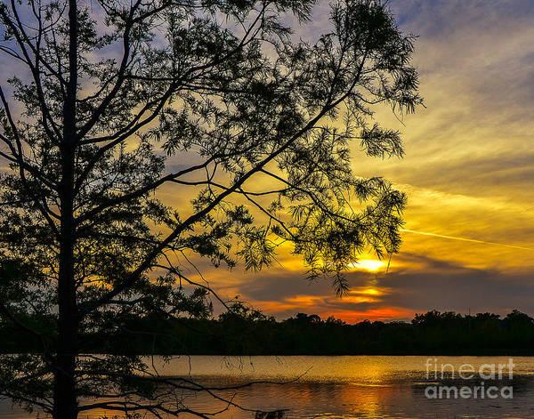Ivanhoe Photograph - Sunsets Pirouette by Amanda Sinco