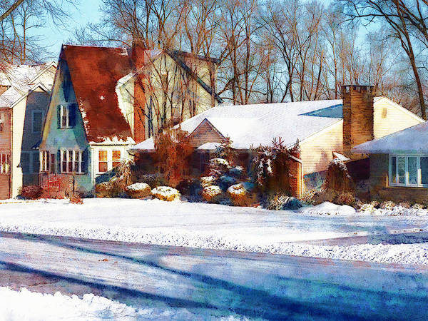 Photograph - Sunshine After The Snow by Susan Savad