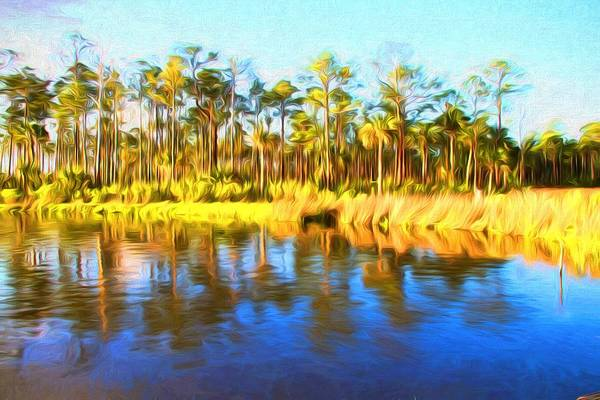 Photograph - Sunshine On The Water by Alice Gipson