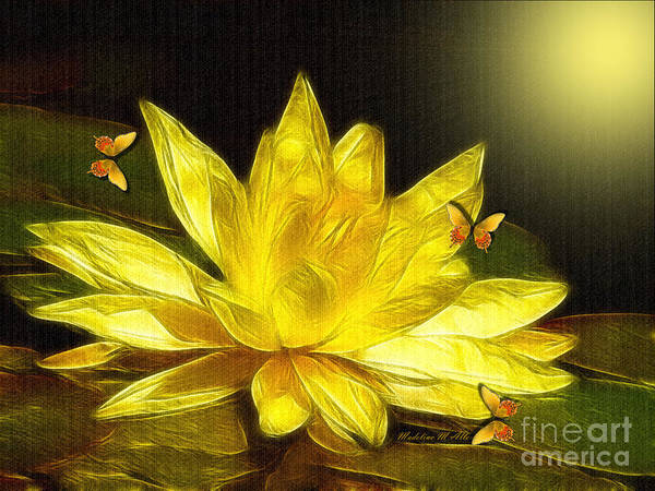 Lilly Pad Digital Art - Sunshine Yellow Water Lily by Madeline  Allen - SmudgeArt