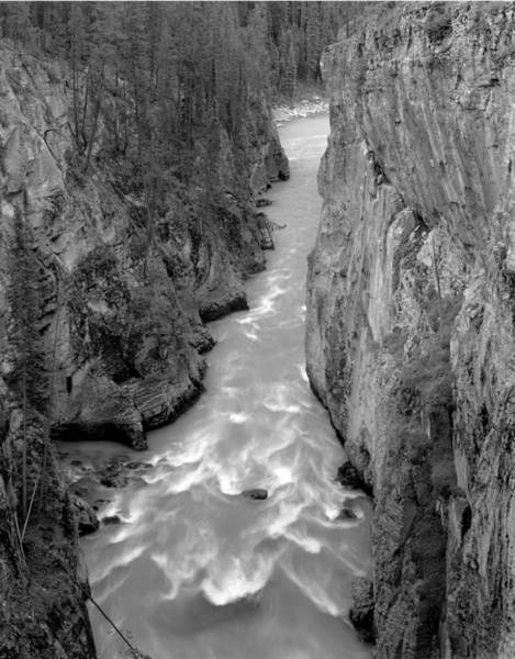 Photograph - 1m3749-bw-sunwapta River  by Ed  Cooper Photography
