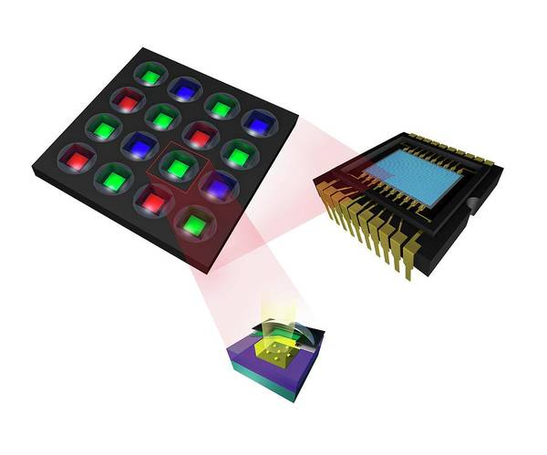 Pixel Photograph - Super Ccd Chip by Paul Wootton/science Photo Library
