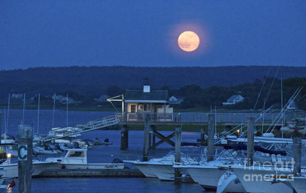 Photograph - Super Moon by Amazing Jules