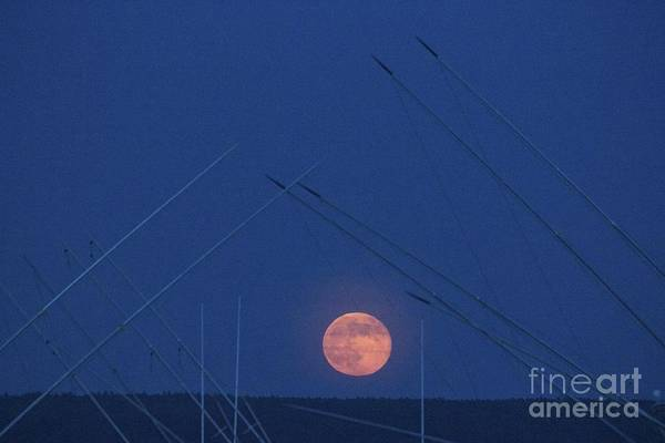Photograph - Super Moon And Masts by Amazing Jules