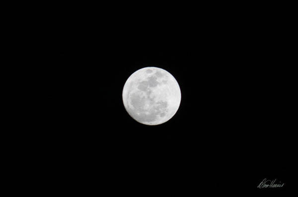 Photograph - Super Moon In Dark Sky by Diana Haronis