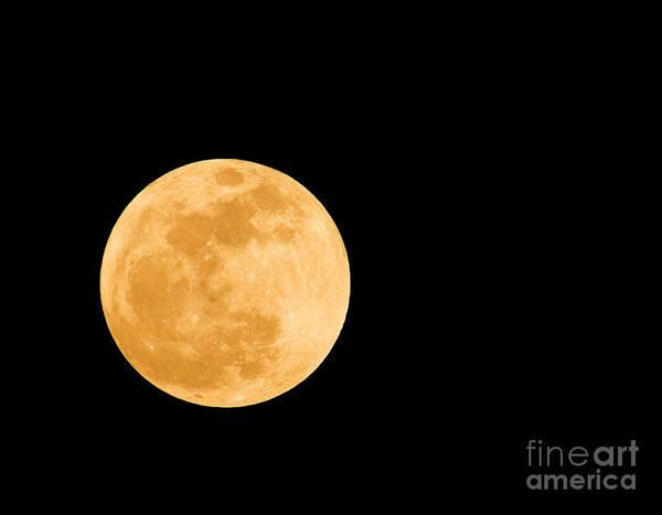 Perigee Moon Photograph - Super Moon by Millard H. Sharp