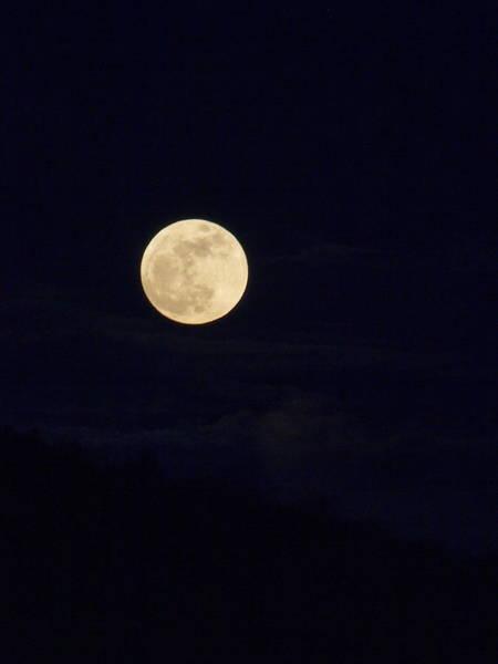 Wall Art - Photograph - Super Moon One by Joshua House