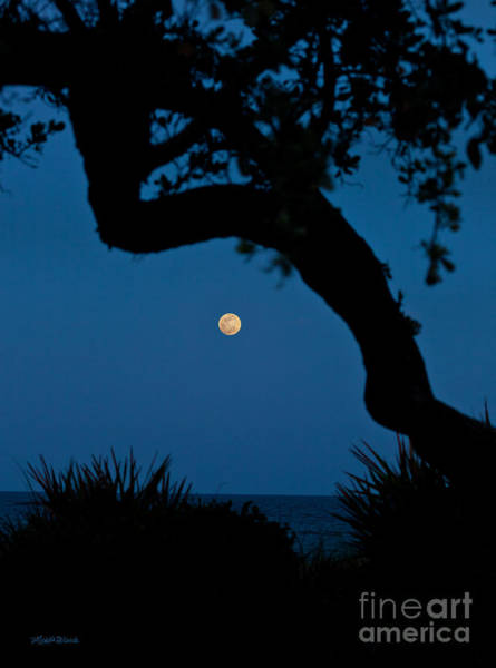 Photograph - Super Moon Over The Atlantic by Michelle Constantine