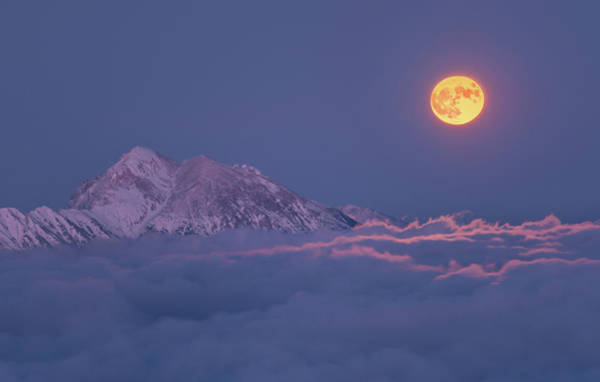 Super Photograph - Super Moon Rises by Ales Krivec