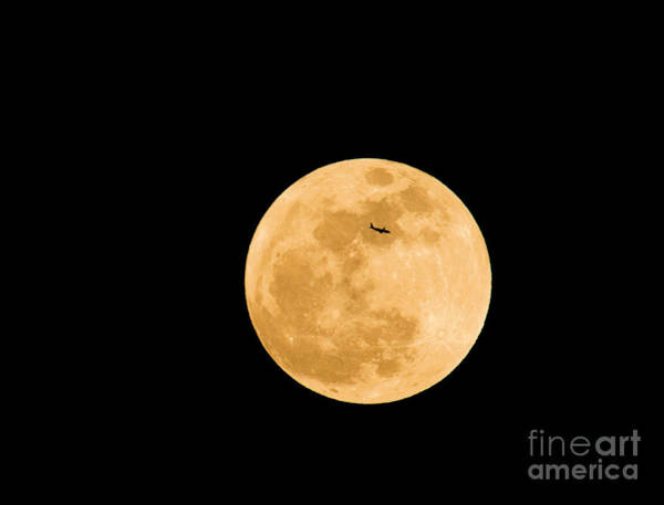 Perigee Moon Photograph - Super Moon With Airliner Silhouette by Millard H. Sharp