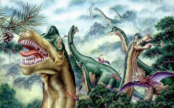 Palaeozoology Wall Art - Photograph - Supersaurus Dinosaurs by Deagostini/uig