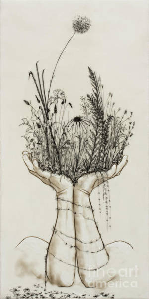 Pen And Ink Mixed Media - Supported Meadow by Andrea Benson