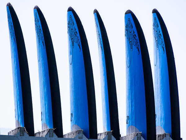 Photograph - Surf Board Blues by Robin Zygelman
