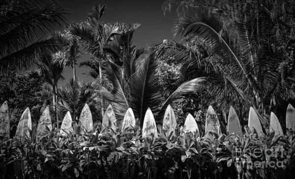 Fielding Photograph - Surf Board Fence Maui Hawaii Black And White by Edward Fielding
