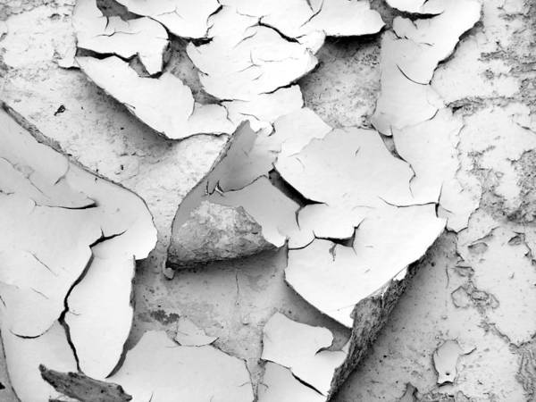 Photograph - Surface Cracks by Tarey Potter