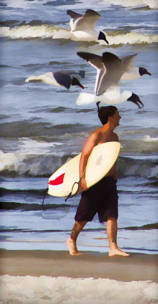 Photograph - Surfer And The Birds by Alice Gipson