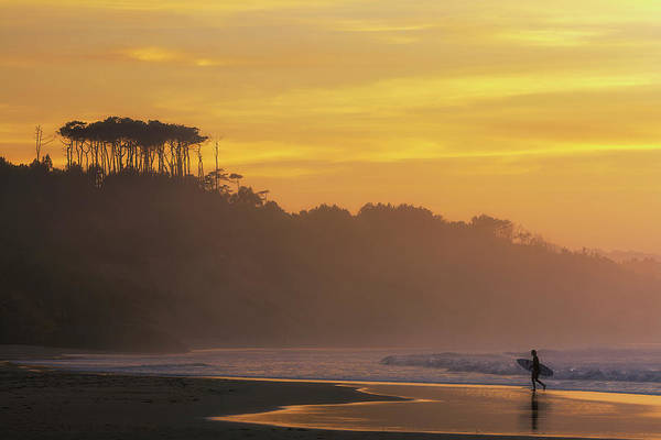 Bodyboard Photograph - Surfer In Golden Hour, In Cantabria by Sergio Saavedra
