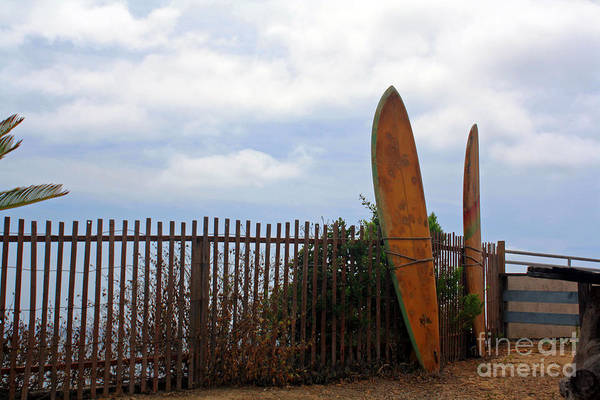 Photograph - Surfs Up by Kelly Holm