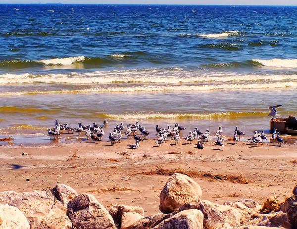 Gulf Digital Art - Surfside Beach Texas by Chris Flees