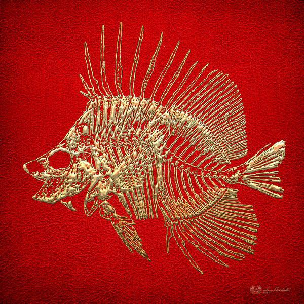 Digital Art - Surgeonfish Skeleton In Gold On Red  by Serge Averbukh
