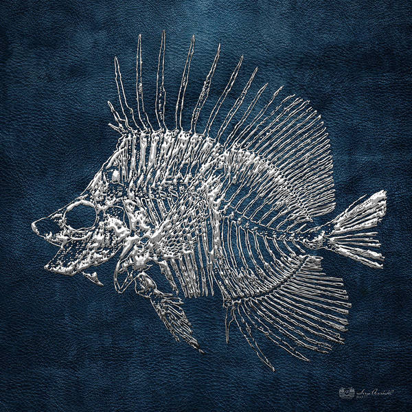 Digital Art - Surgeonfish Skeleton In Silver On Blue  by Serge Averbukh