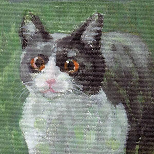Tuxedo Cat Painting - Surprised Cat by Kazumi Whitemoon