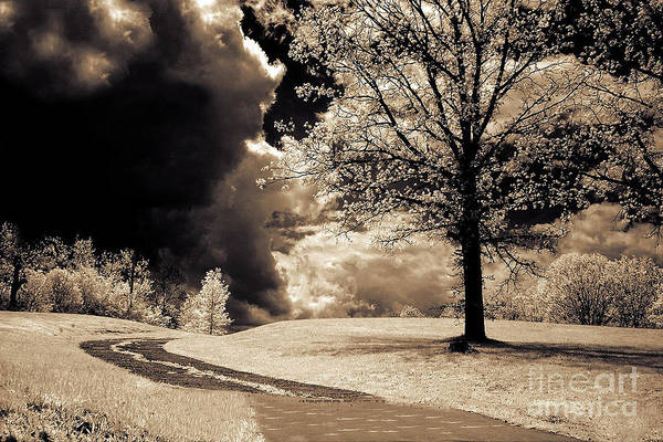 Infrared Photograph - Surreal Dark Gothic Infrared Sepia Trees Clouds Landscape by Kathy Fornal
