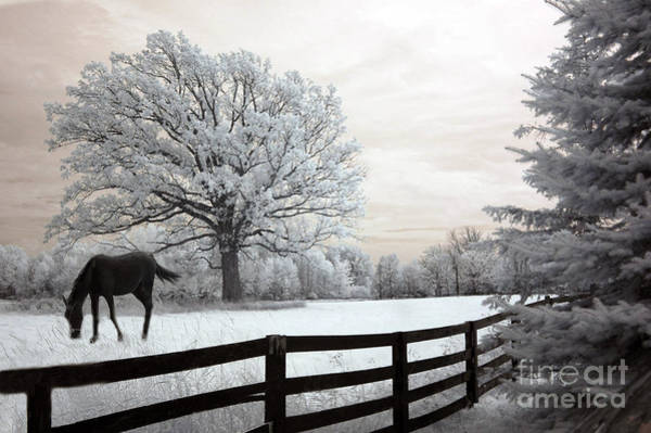 Beautiful Horse Wall Art - Photograph - Surreal Dreamy Infrared Trees - Fantasy Infrared Horse Nature Landscape With Fence Post by Kathy Fornal