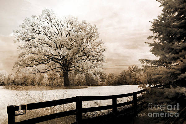 Infrared Photograph - Surreal Dreamy Infrared Trees Nature Sepia Ethereal Landscape With Fence by Kathy Fornal