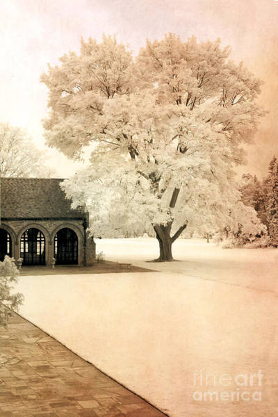 Infrared Photograph - Surreal Ethereal Infrared Sepia Nature Landscape by Kathy Fornal