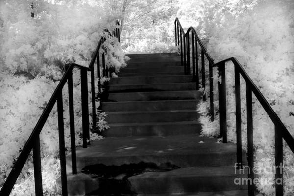 Infrared Photograph - Surreal Stairs Fantasy Black And White Stairs Nature Infrared Staircase by Kathy Fornal