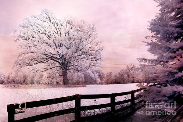 Infrared Photograph - Surreal Fantasy Dreamy Pink Infrared Trees And Nature Landscape  by Kathy Fornal