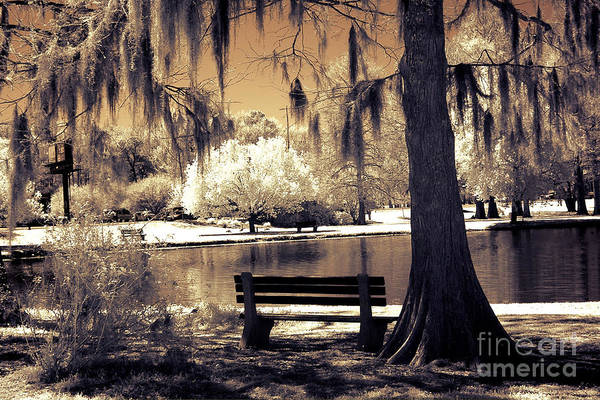 Infrared Photograph - Surreal Fantasy Ethereal Infrared Sepia Park Nature Landscape  by Kathy Fornal