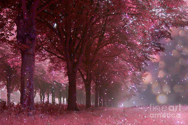 Mauve Photograph - Surreal Fantasy Nature Trees With Twinkling Sparkling Lights And Bokeh - Fantasy Fairytale Nature  by Kathy Fornal