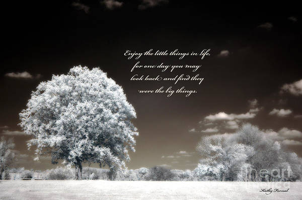 Infrared Photograph - Surreal Infrared Trees With Inspirational Message  by Kathy Fornal