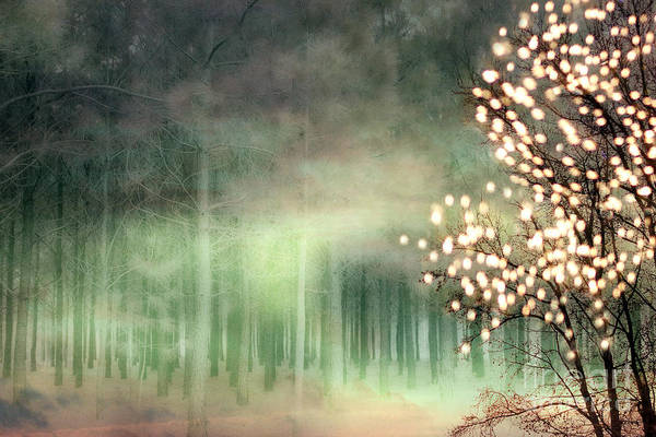 Sparkle Wall Art - Photograph - Surreal Sparkling Fantasy Nature - Green Sparkling Lights Trees Forest Woodlands by Kathy Fornal