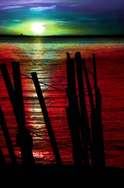 Photograph - Surreal Sunset by Marianna Mills