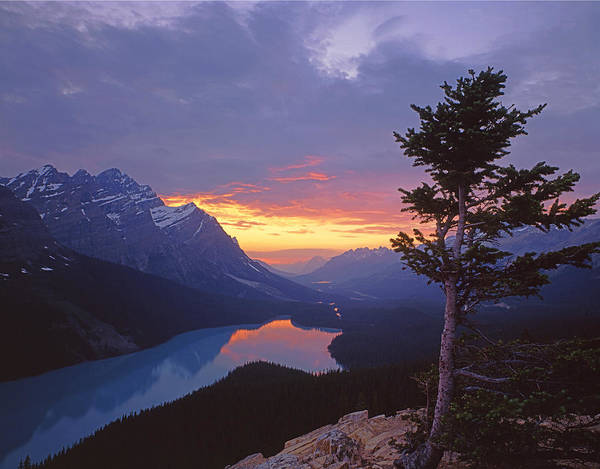 Photograph - 1m3607-sunset Over Peyto Lake by Ed  Cooper Photography