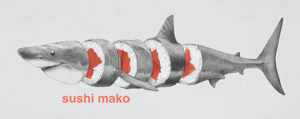 Shark Drawing - Sushi Mako by Eric Fan